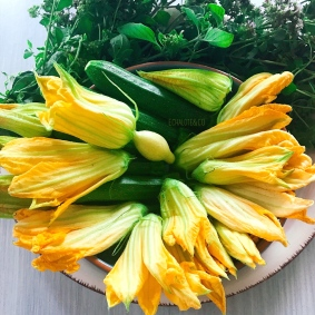 Zucchini Flowers - Fleurs de Courgettes / Crédits photos EchaloteandCo