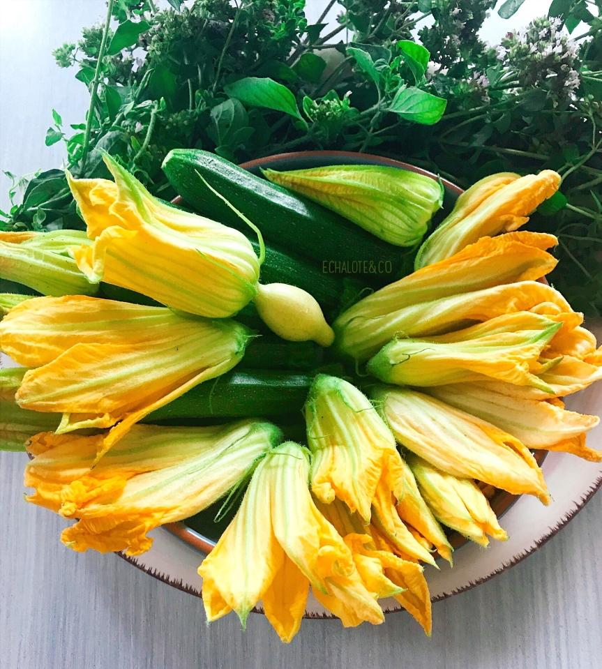 Zucchini Flowers - Fleurs de Courgettes by Echalote&Co