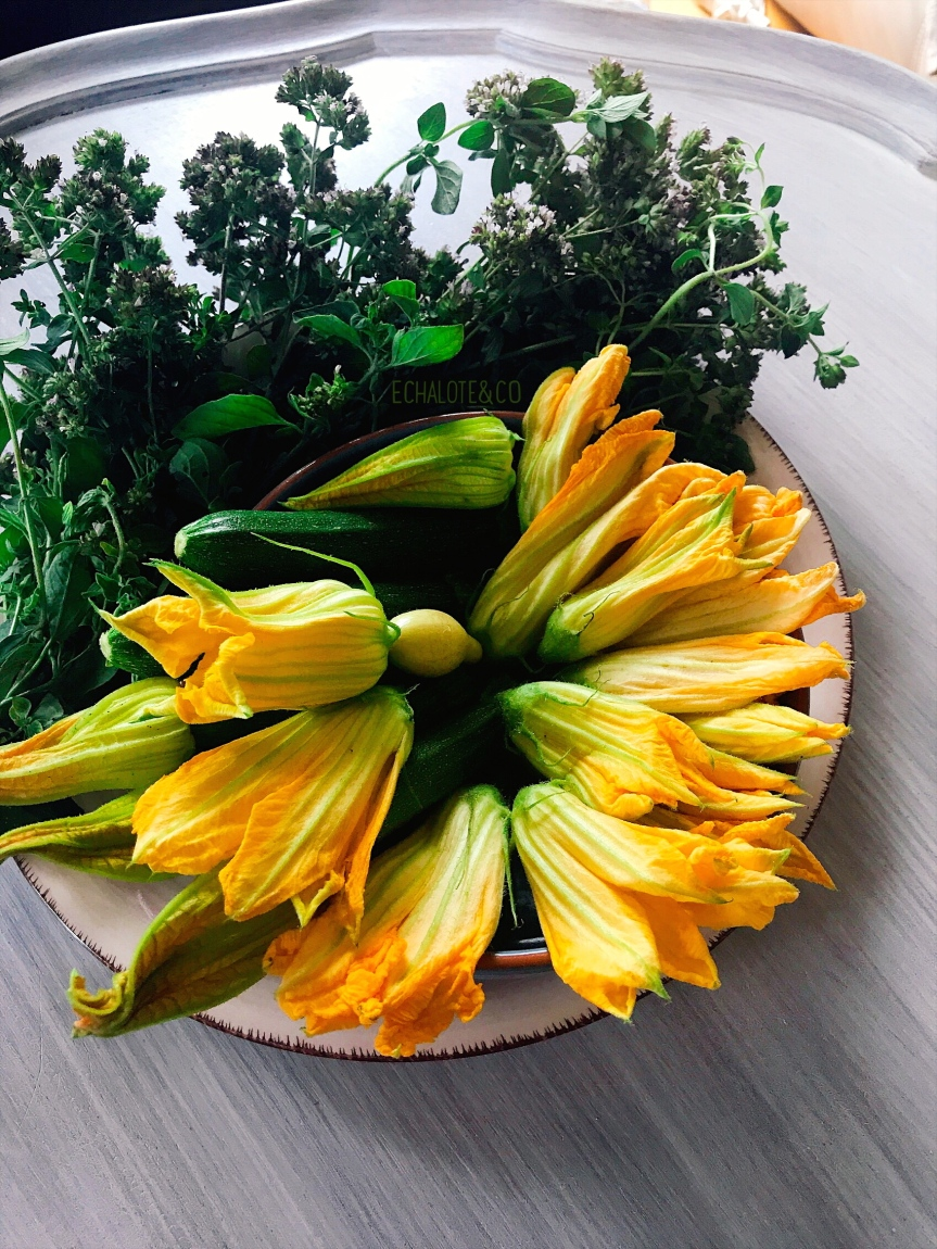 Fleurs de Courgettes -Zucchini Flowers by Echalote&Co
